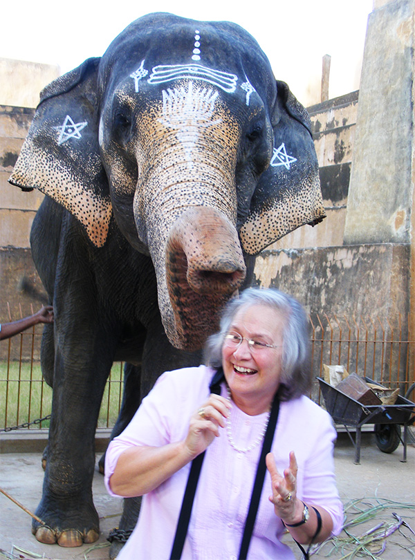 The temple elephant remembers Aline